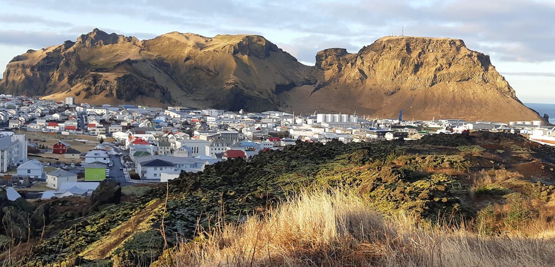 Bærinn Viðar Breiðfjörð